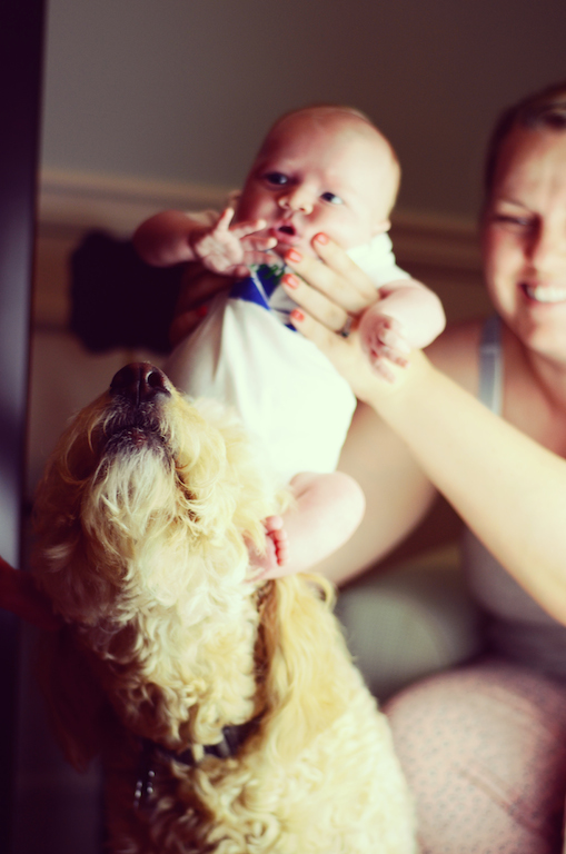baby-and-dog-playful