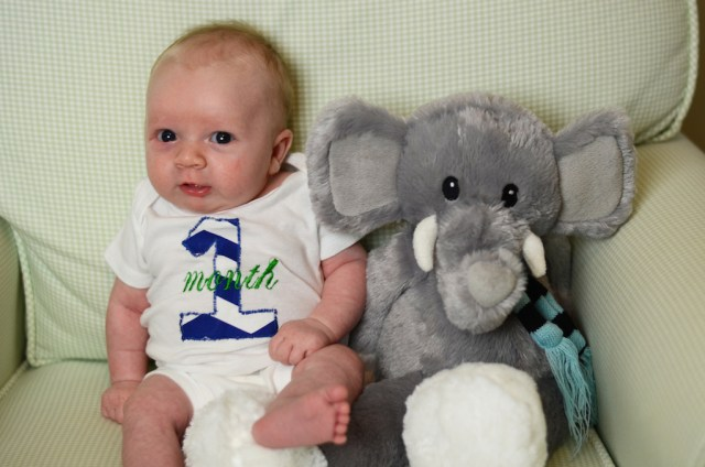 one-month-old-picture-with-stuffed-animal