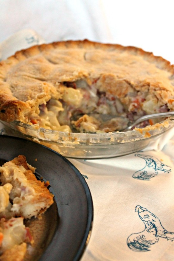 Corned Beef Pie and plate edited