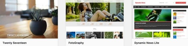 how to start a travel blog: WP themes