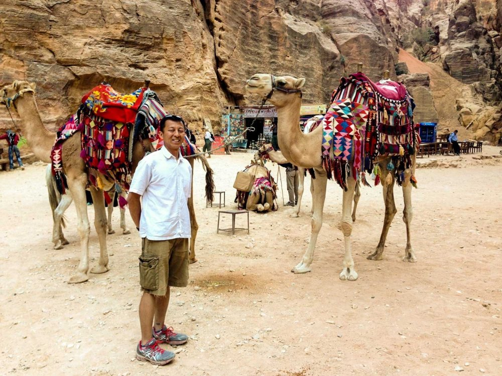 Highlights of Petra - Camels in front of The Treasury