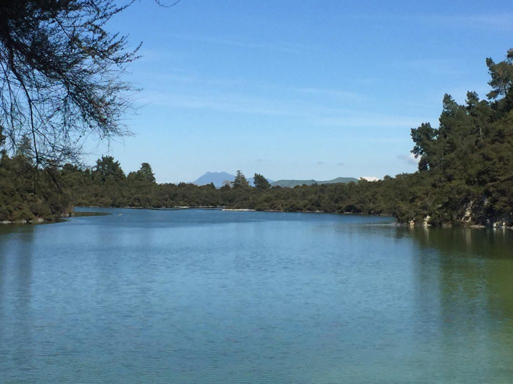 The view from a lake at Wai-O-Tapu Thermal Wonderland