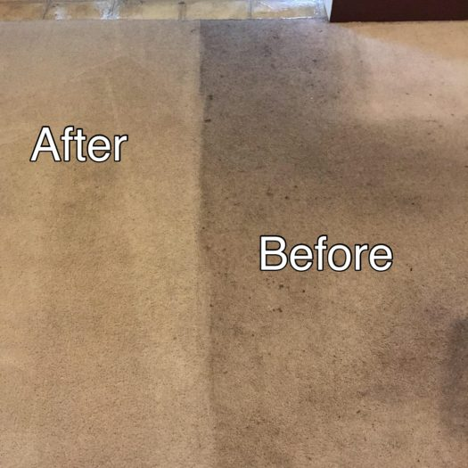 Guaranteed Carpet Cleaning Lancaster Pa Lets See Carpet