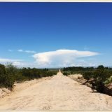Road to Desert Rain: Crystal Joslyn
