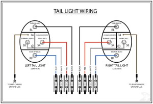 TheSamba :: Gallery  Tail Light Wiring Diagram (WRONG)