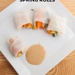 Chicken + Avocado Spring Rolls