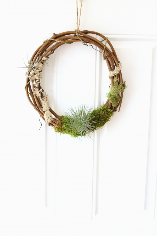 Living Airplant Wreath