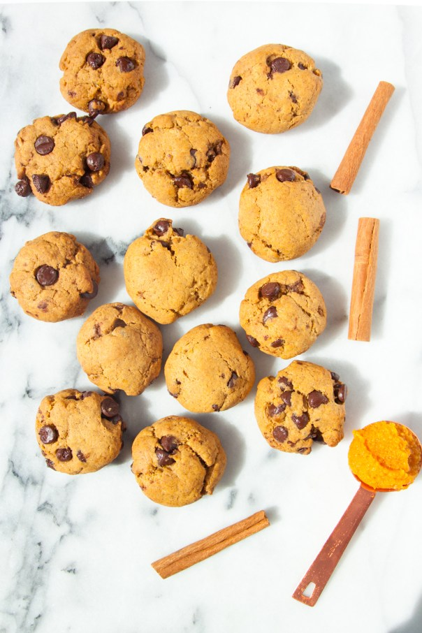 vegan-pumpkin-chocolate-chip-cookies-1