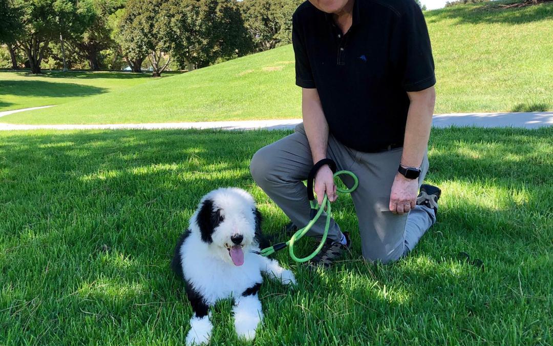 Savvy Pets, 9/27/19:  Awwww, Coda!