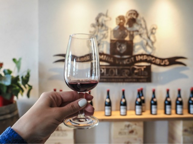 fun things to do in the loire valley include wine tasting