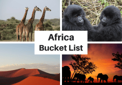 Things to do in Africa Bucket List Experiences