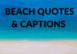 Best Beach Quotes and Captions