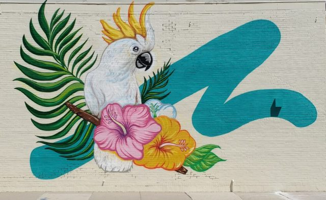 The Songbird Wall in Chicago