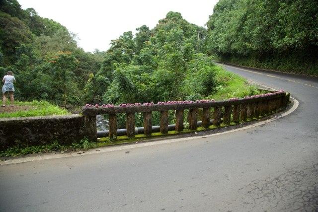 Road to Hana Maui