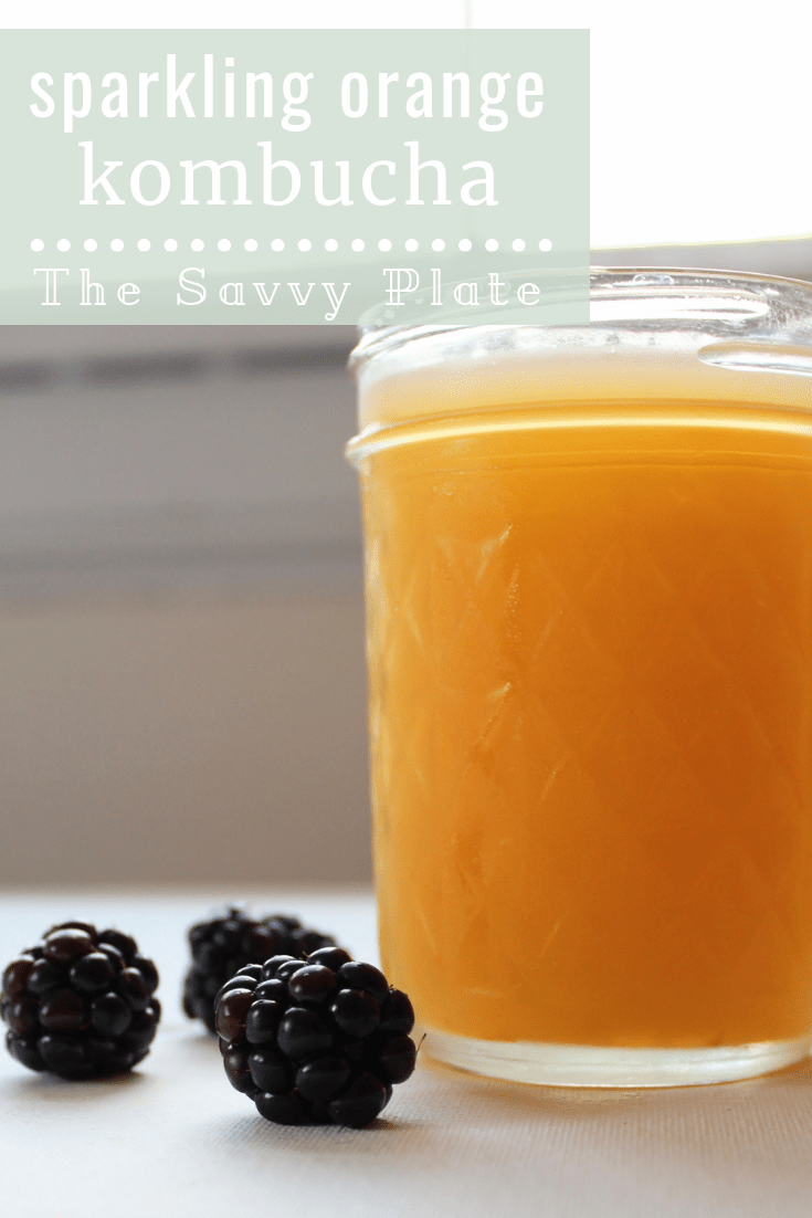 Sparkling Orange Kombucha - The Savvy Plate