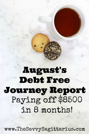 I have been working so hard during my debt free journey! I have paid off $8500 in the last 8 months! Here is how I did and what I learned in the month of August