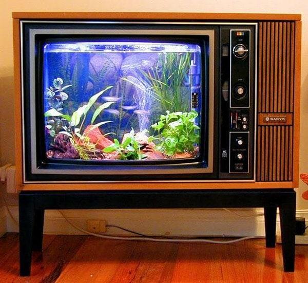 TV into acquarium