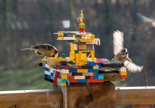 instructions free cut easy bird step plans by and mark the feeder pieces end a build hopper