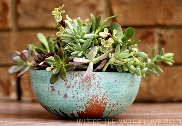 Aged Copper Pot With Succulents