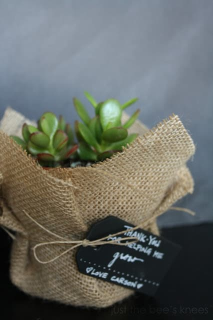 Small Planter Thank You Gift To Teacher