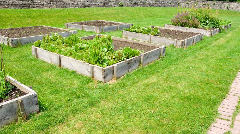 four square raised gardens