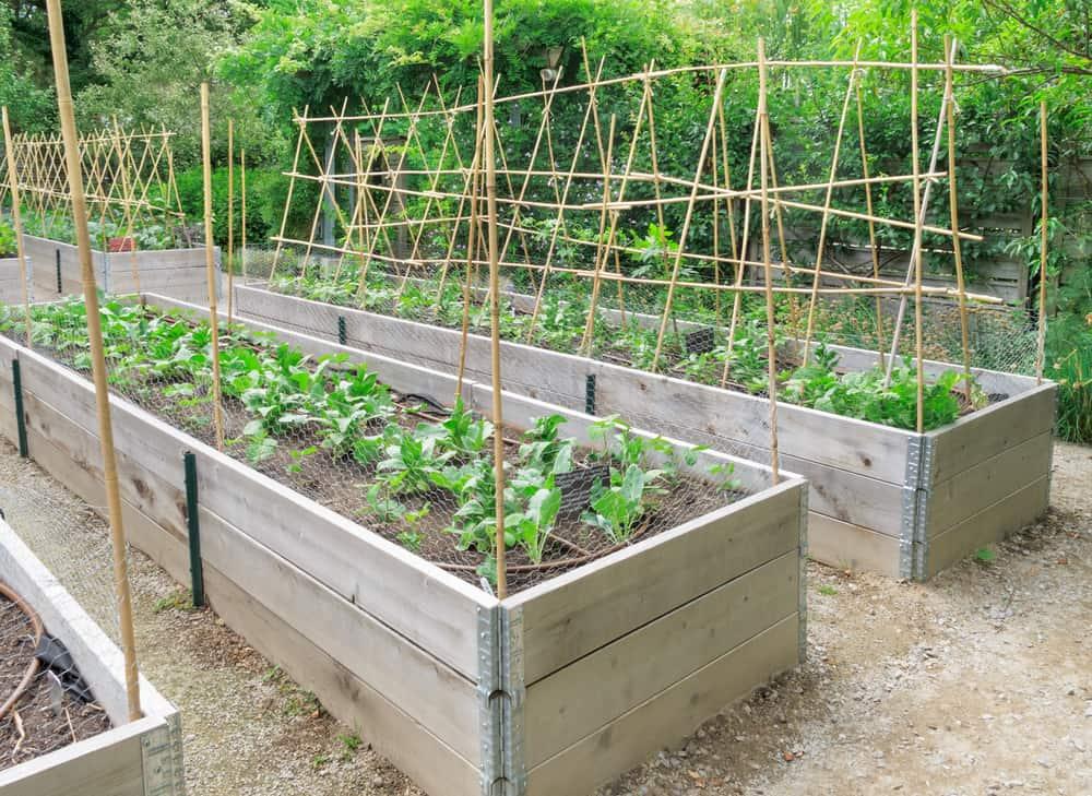 long greenhouse gardens