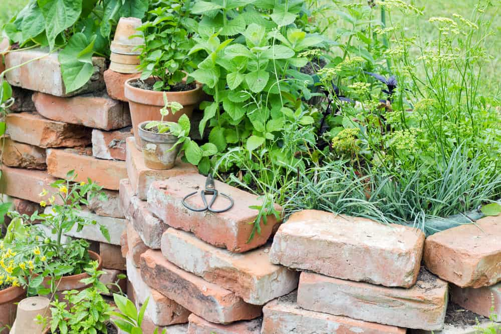 brick frame for raised garden