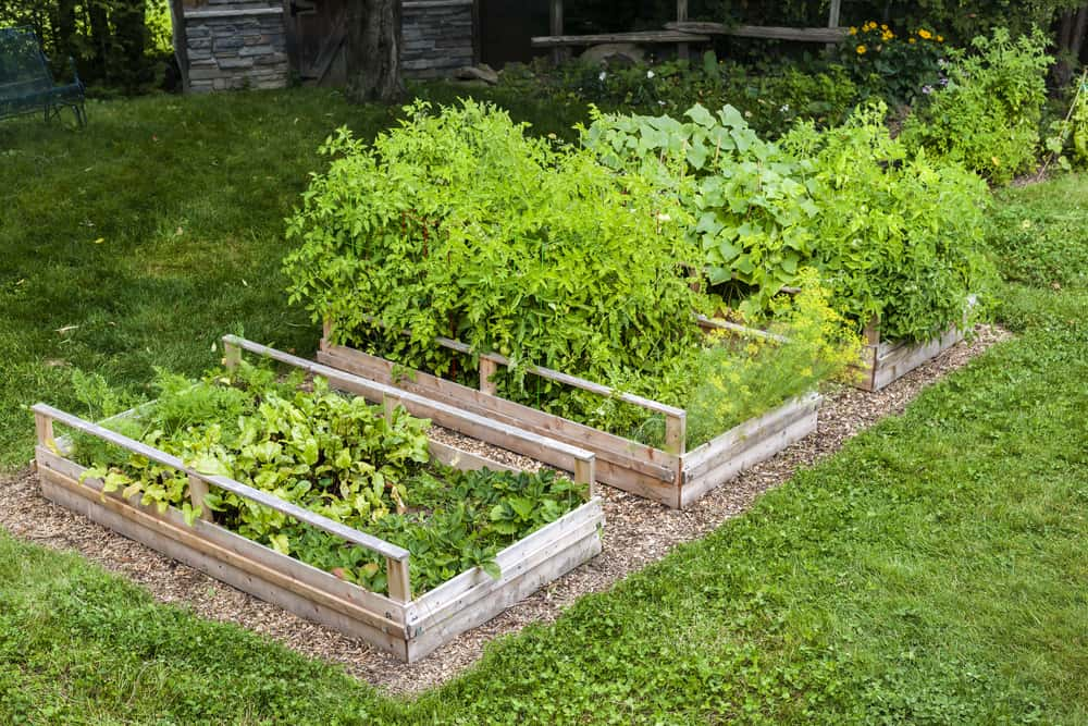 basket style garden railing
