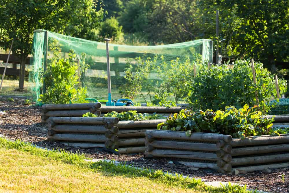 black linked log garden