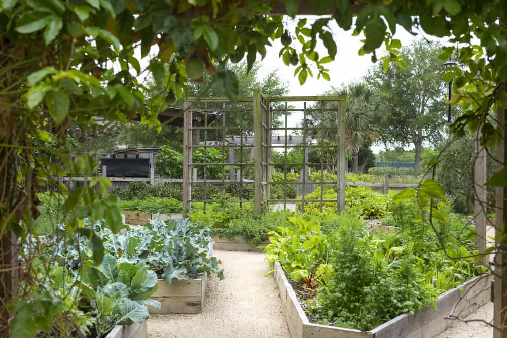 irregularly shaped gardens