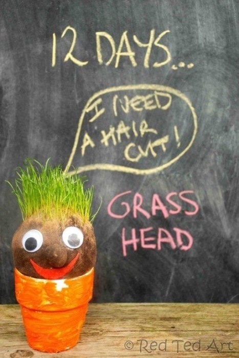 Grass Head I can promise your child is going to love cutting the hair on your homemadegrass head! Each handmade grass head will be different so you can have a variety of adorable plants filling your space.thesawguy.com