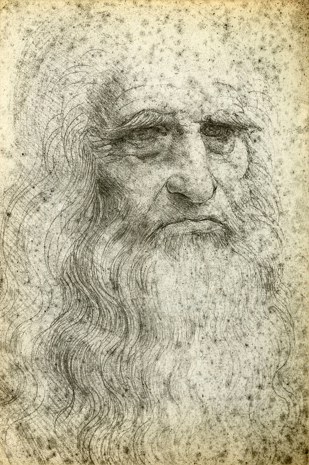 Leonardo Da Vinci For Children