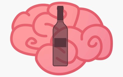 Researchers uncover new target of alcohol in the brain