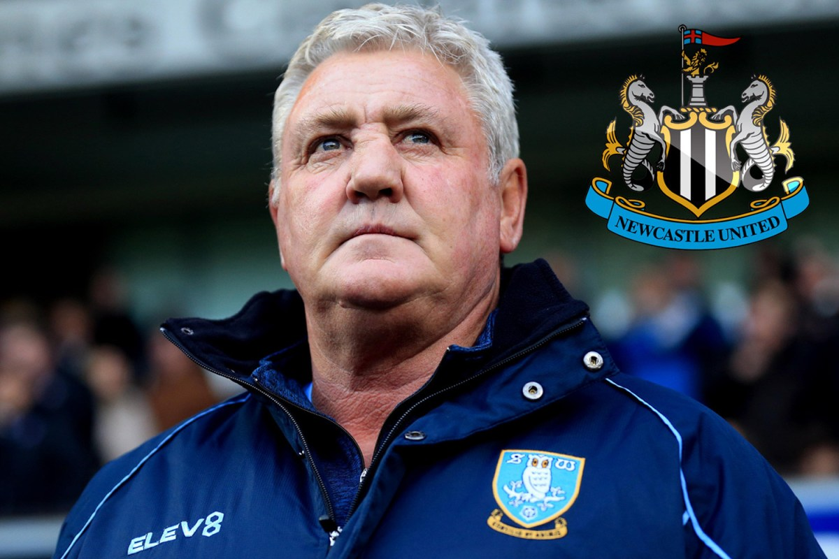 Steve bruce · callum wilson is unavailable as newcastle aim to secure their first win of · newcastle head coach steve bruce is refusing to walk away from his. Steve Bruce 'resigns as Sheffield Wednesday boss' ahead of ...