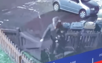 Footage of the horrifying incident has been shared by UK Animal Cruelty Files