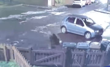 He returned a short time later to launch a wheelie bin into the same garden