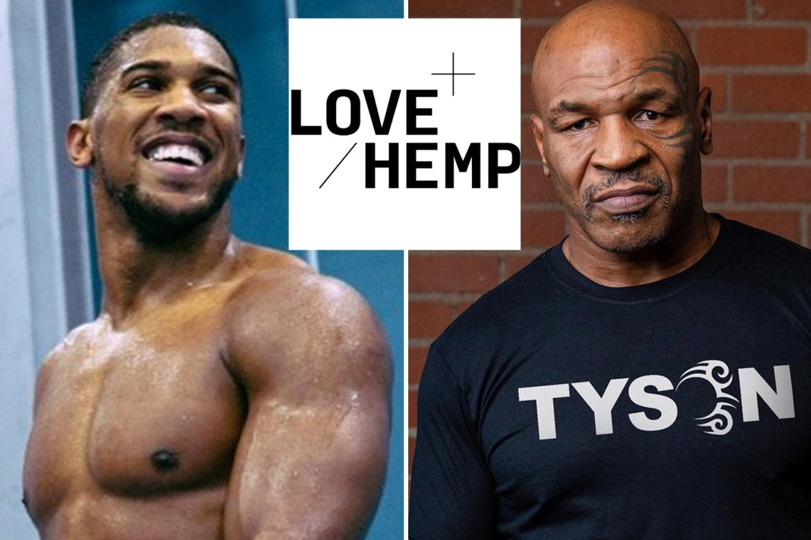 Anthony Joshua signs deal to promote CBD company Love Hemp as he follows Mike Tyson and David Beckham into boom industry