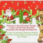 {12 Days of Christmas Blog Hop Day 9}