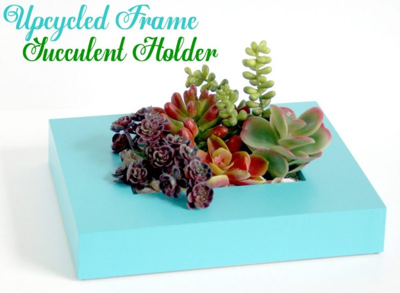 upcycled-frame-succulent-holder