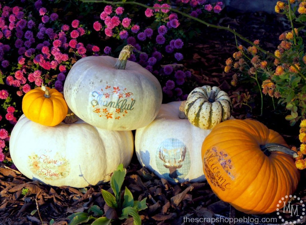 Creative and fun no carve pumpkin ideas