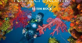 Diving and Snorkeling Guide for Truk Lagoon, Pohnpei and Kosrae at The Scuba News