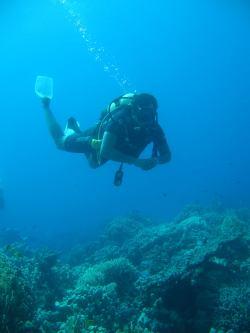 divers-lodge-osama-soliman-1