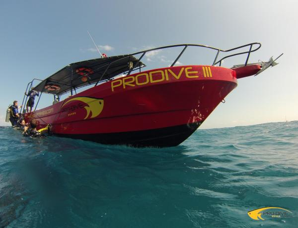 Fantastic Job Opportunities with Pro Dive International