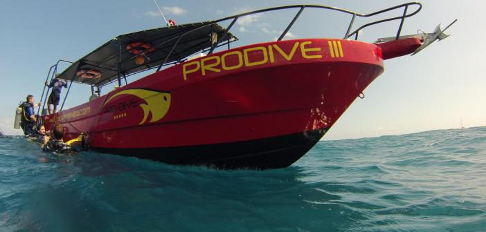 Pro Dive International – Come Dive with Us, The Safest Place is Underwater!