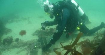 poldark-shipwreck-14-12-16