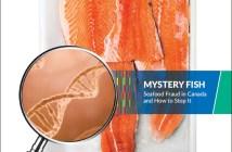 Oceana Canada Seafood Fraud