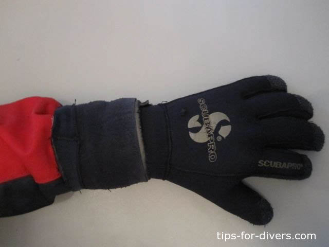 Arm warmers ready for diving action: They are worn above seal and glove