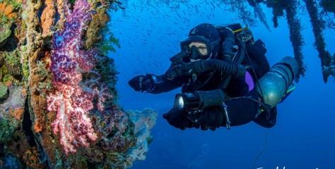 Life Saving Procedures with Jill Heinerth