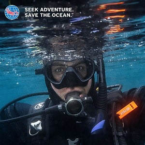 Why Scuba Diving is for you