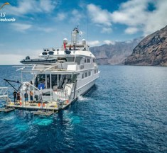 Nautilus Belle Ami Liveaboard – Revillagigedo Archipelago Big Critter Adventure
